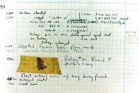 primer_bug.jpg