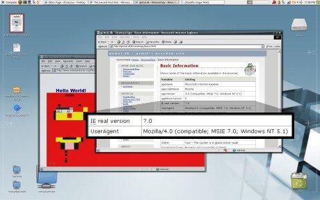 ie7_ubuntu1.jpg