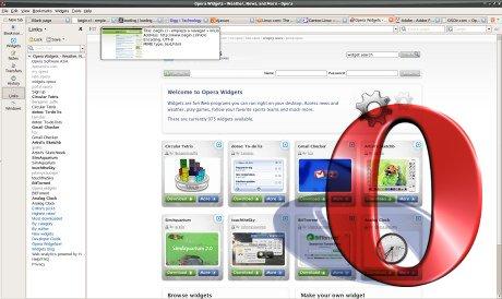 opera_ubuntu_screenshot.jpg